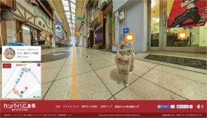 Cat Street View traz ruas aos olhos de gatos