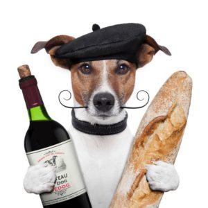 cachorros poderão degustar vinho