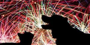 fogos de artifício cães e gatos